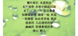 泡绿茶意/李小柳